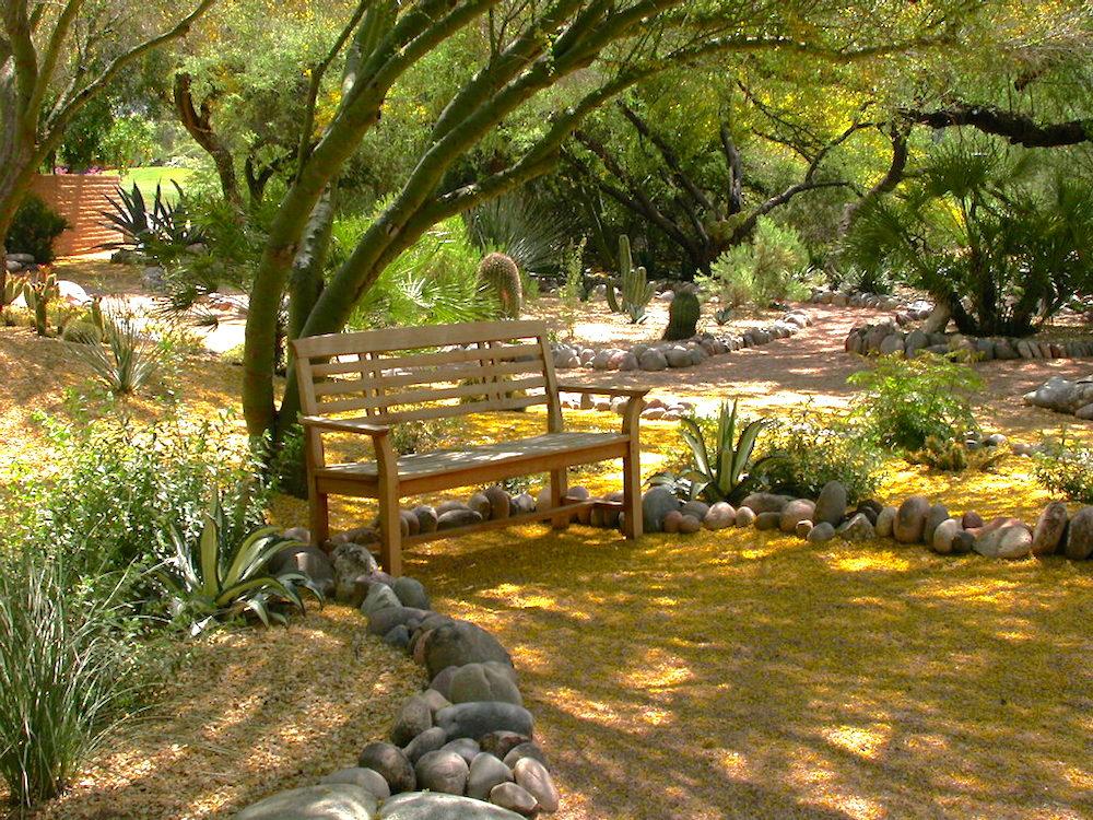 Bench in Dillon garden