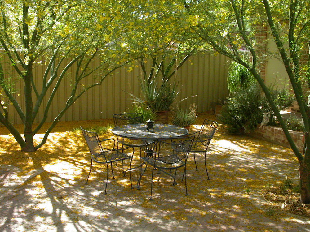 Shady seating space - Corman